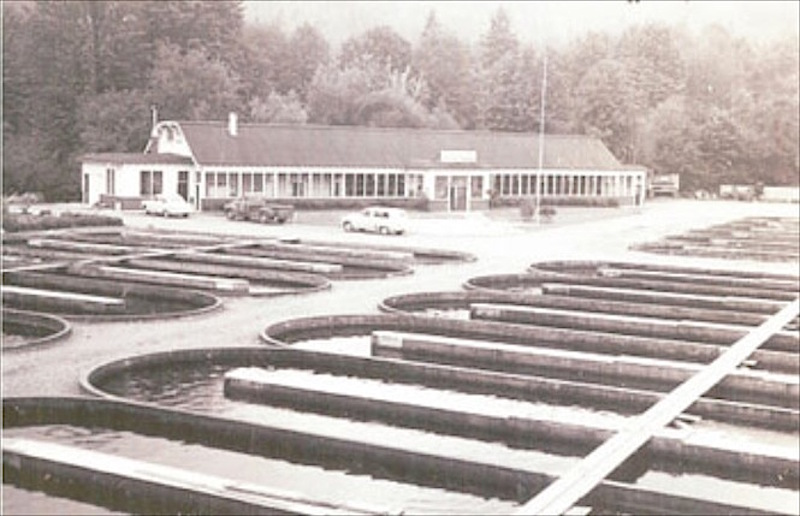 Historical Salmon Hatchery