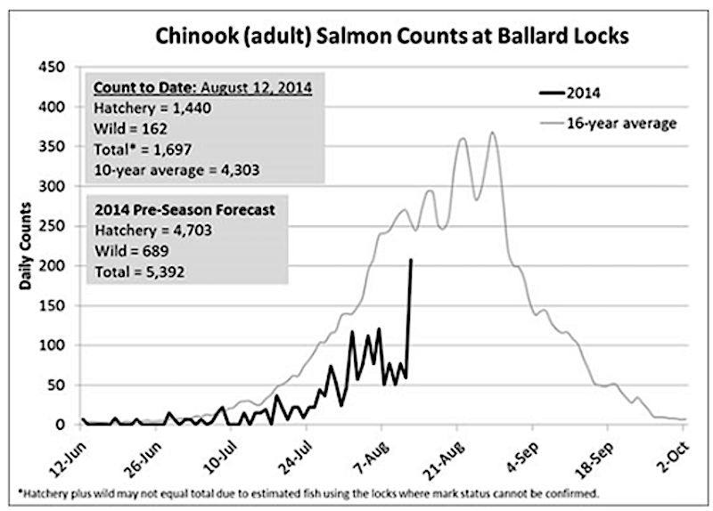 Where's the Fish 2-Salmon Count Chart
